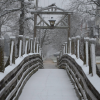 Snow on Bridge